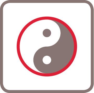 Icon Ying-Yang